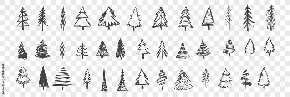 Fototapeta Hand drawn christmas trees set