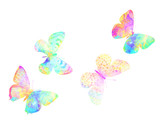 multicolor watercolor butterflies. tropical insect for design. isolated on white