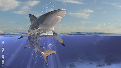 Photo Perfect scene of blacktip reef shark jumping out of water and underwater is show