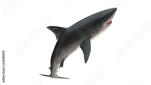 Great white shark isolated on white background cutout ready leaping view 3d rend Canvas Print