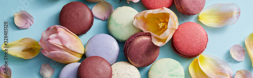 Fototapeta top view of assorted delicious french macaroons with floral petals on grey background, panoramic shot obraz