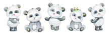 Pandas, Cute, Different Body P...