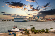 A Busy Tropical Harbor With A ...