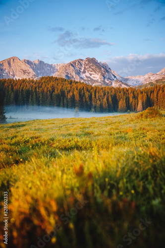 Wall mural - Misty summer day in the Durmitor National park. Location place village Zabljak, Montenegro.