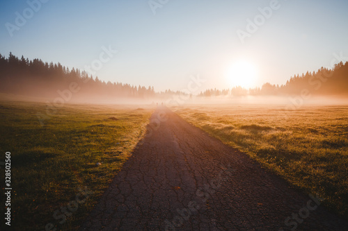 Wall mural - Fantastic misty pasture in the sunlight. Locations place Durmitor National park, Montenegro.