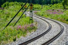 Railway In Forest, In Sweden S...
