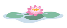 Isolated Vector Illustration Of A Beautiful Pink And Yellow Water Lily On Green Water Lily Leaves On Blue Water