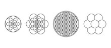 Flower Of Life, Seed And Egg O...