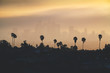 Leinwandbild Motiv Los Angeles downtown silhouette at sunset. LAX most famous city of california. Typical view of the Los Angeles.