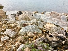 Huge Mined Stones Dumped On The Ground Forming The Shore Of A Flooded Mine