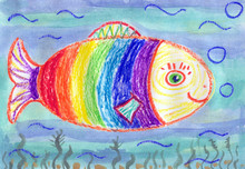A Large Rainbow Fish In The Un...