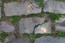 A Close View On A Brick Of An Old Brick Road. Grey Brick, Green Grass, Moss And Lichen.