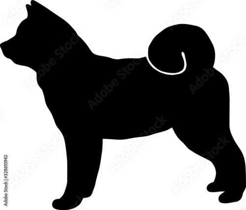 akita dog vector black illustration Canvas Print