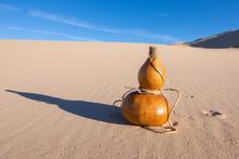 Calabash Bottle Gourd And Shadow In Desert