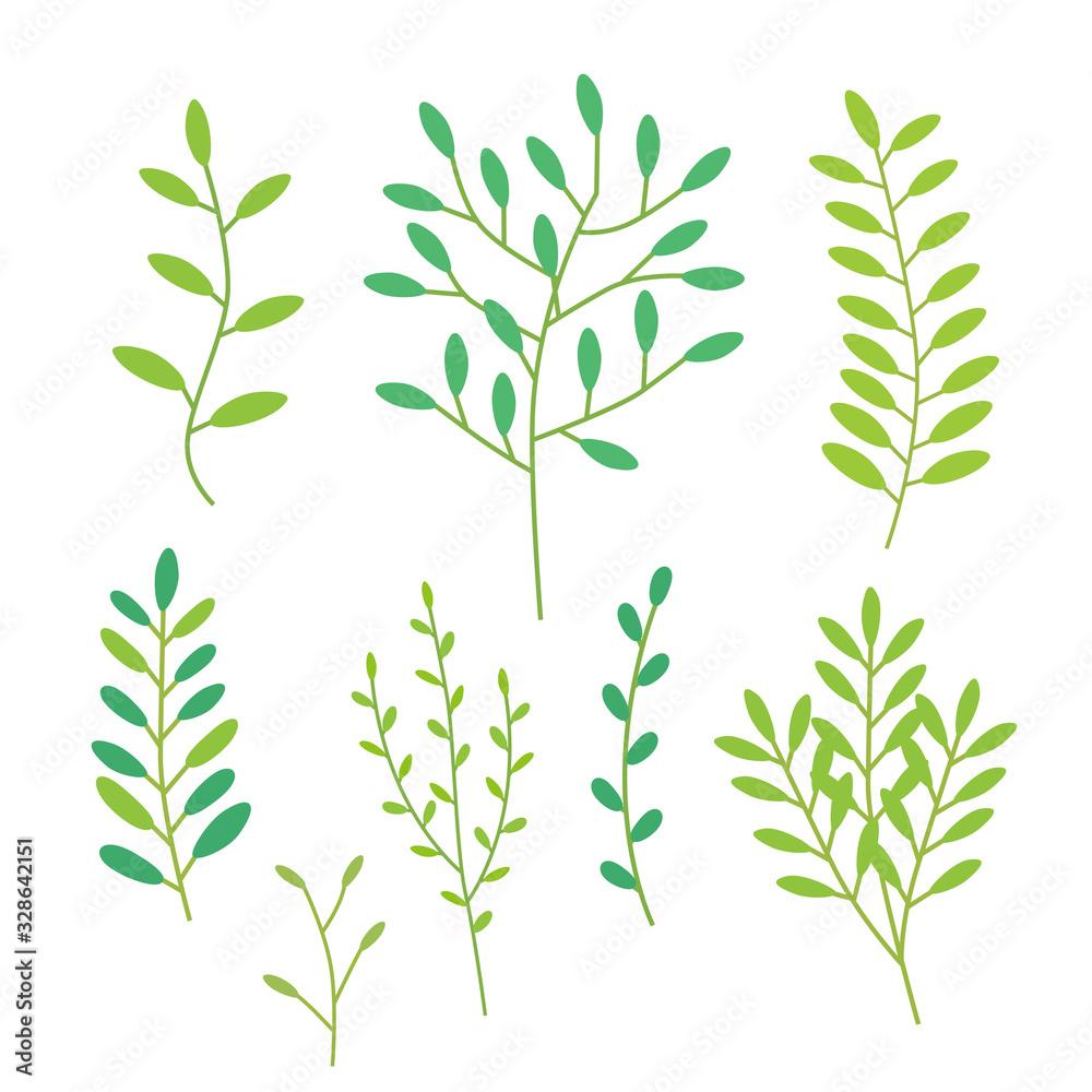 Fototapeta 草 植物 グリーン 素材