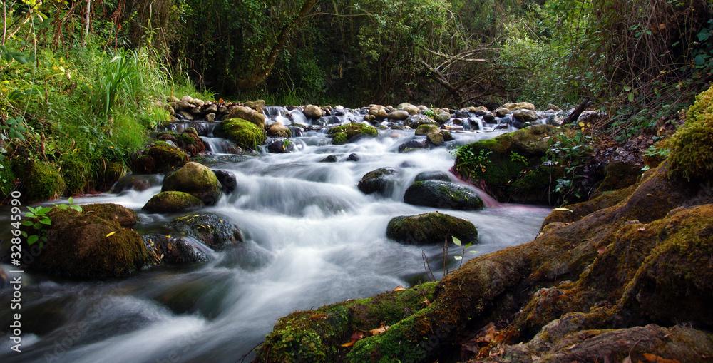 Fototapeta ruisseau de montagne