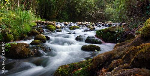 ruisseau de montagne Fotobehang