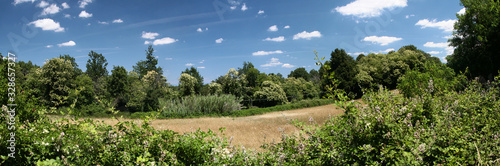 Leinwand Poster Panoramic view of green forest and field of ripe wheat