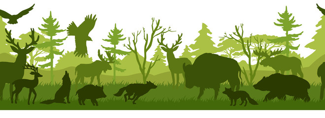 Horizontal seamless landscape with forest animals' silhouettes. Coniferous wo...