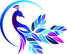 Colorful Peacock Logo