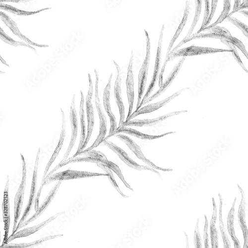 Fotografie, Obraz Elegant palm tree branches tropical seamless