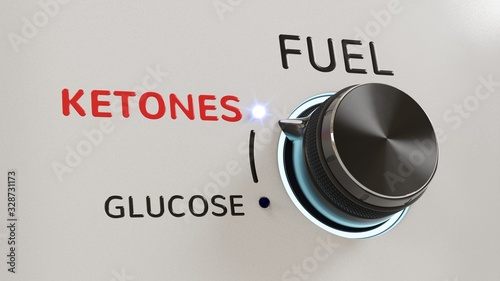 A fuel knob set to ketones, out of glucose and ketones Canvas Print
