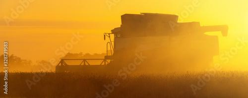 Obraz Combine harvester on the field at sunset. - fototapety do salonu