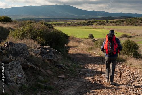 Photo Peregrino entre Undués de Lerda y Sangüesa en el Camino de Santiago Aragonés
