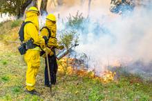 Firefighter Fighting Californi...
