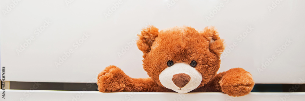 Fototapeta  Brown plush toy Teddy bear crawling out of chest of white drawers