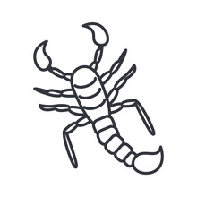 Scorpio Insect, Line Detail St...
