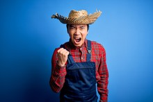 Young Handsome Chinese Farmer Man Wearing Apron And Straw Hat Over Blue Background Angry And Mad Raising Fist Frustrated And Furious While Shouting With Anger. Rage And Aggressive Concept.
