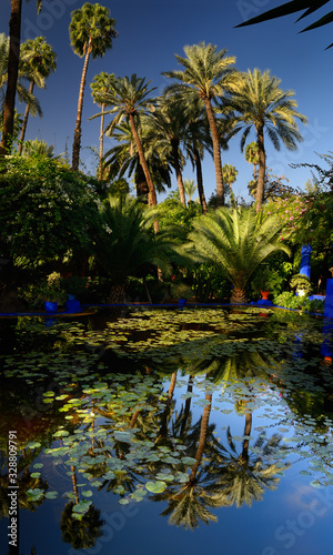 Vertical panorama of watergarden and palm trees at Majorelle Garden in Marrakech Wallpaper Mural