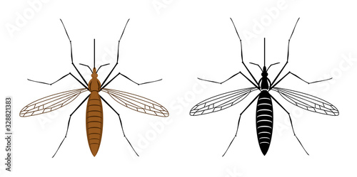 Colorful and black silhouette mosquito isolated on white background Canvas Print