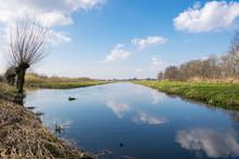 Classic Dutch Polder Landscape...
