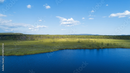 Foto Aerial view on swamp lake in summer sunny day