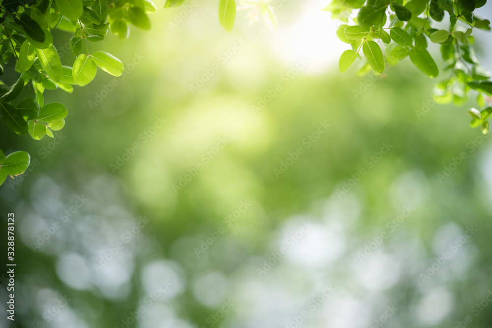 Fototapeta Beautiful nature view of green leaf on blurred greenery background in garden with copy space for text using as summer background natural green plants landscape, ecology, fresh wallpaper concept.