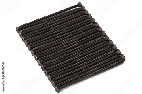 Long laid exactly screws for wood. Isolated. Canvas-taulu