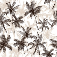 Tropical Pattern With Sketchy Palm Trees
