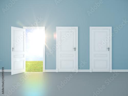 Valokuva Blue room interior with open door to field.