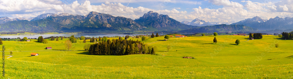 Obraz panoramic landscape with meadow and lake in front of alps mountains fototapeta, plakat