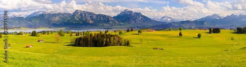 Obraz panoramic landscape with meadow and lake in front of alps mountains - fototapety do salonu