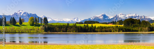 panoramic landscape with meadow and lake in front of alps mountains - fototapety na wymiar