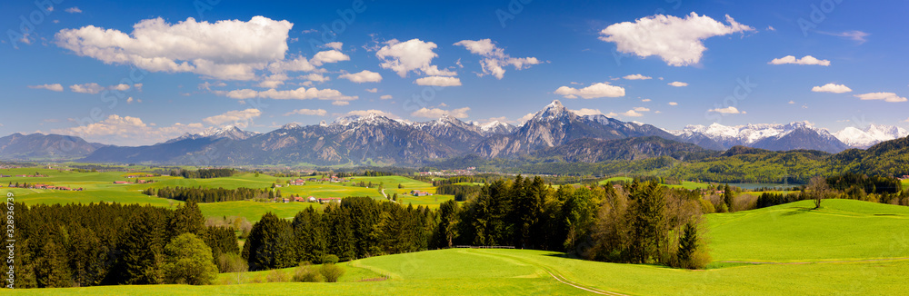 Fototapeta panoramic landscape with meadow and lake in front of alps mountains