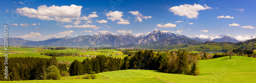 panoramic landscape with meadow and lake in front of alps mountains