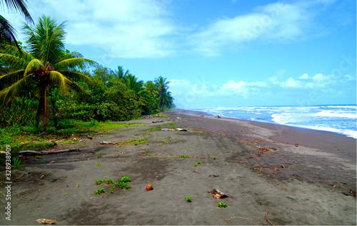 Valokuva Wild Beach Tortuguero National Park Costa Rica