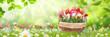Frühling 493