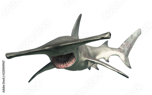 Obraz A hammerhead shark swims by you.  Beware this aquatic predator. 3D illustration - fototapety do salonu