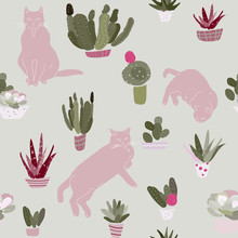 Black Cats And Cacti In Pots O...