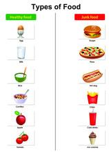 Types Of Food List Vector Illu...